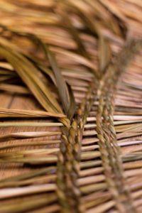 Tim Johnson - Vannerie - Travailler avec du jonc, des herbes, de l'écorce et d'autres matériaux mous.